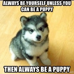 Baby Courage Wolf - always be yourself unless you can be a puppy then always be a puppy