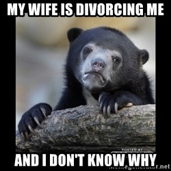 sad bear - My wife is divorcing me And I don't know why
