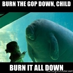 Overlord Manatee - Burn the GOP down, child burn it all down
