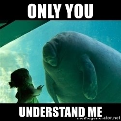 Overlord Manatee - only you understand me