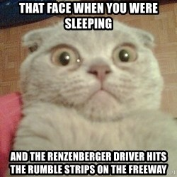 GEEZUS cat - That face when you were sleeping And the Renzenberger driver hits the rumble strips on the freeway