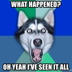Spoiler Dog - What happened? Oh yeah I've seen it all