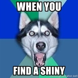 Spoiler Dog - When you Find a shiny