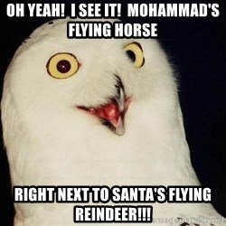 O Rly Owl - oh yeah!  I see it!  Mohammad's flying horse right next to santa's flying reindeer!!!
