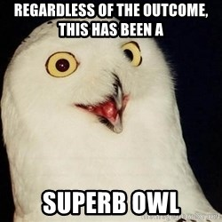 O Rly Owl - Regardless of the Outcome, this has been a  Superb owl