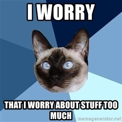 Chronic Illness Cat - I worry  THAT I WORRY ABOUT STUFF TOO MUCH