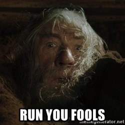 gandalf run you fools closeup -  run you fools