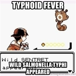 a wild pokemon appeared - TYPHOID FEVER Wild salmonella typhi APPEARed