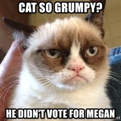Grumpy Cat 2 - cat so grumpy? he didn't vote for megan