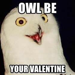 O Rly Owl - owl be your valentine