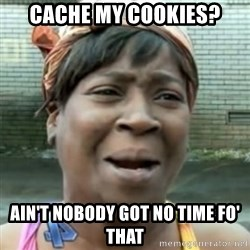 No time for that - cache my cookies? ain't nobody got no time fo' that