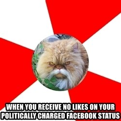 Diabetic Cat -  when you receive no likes on your politically charged facebook status