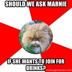 Diabetic Cat - should we ask marnie if she wants to join for drinks?