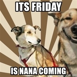 Stoner dogs concerned friend - Its Friday Is nana coming