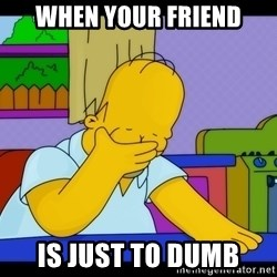 Homer Facepalm - When your friend Is just to dumb