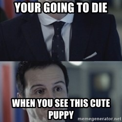 Misleading Moriarty - Your going to die When you see this cute puppy
