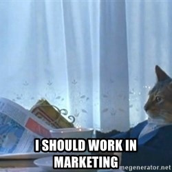 Sophisticated Cat -   I SHOULD WORK IN MARKETING