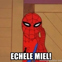 Spidermanwhisper -  Echele Miel!