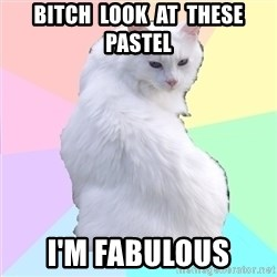 Beauty Addict Kitty - Bitch  look  at  these pastel I'm fabulous
