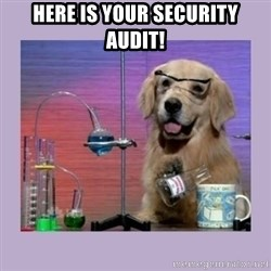Dog Scientist - Here is your security audit!