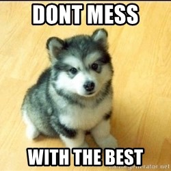 Baby Courage Wolf - Dont mess  With the best