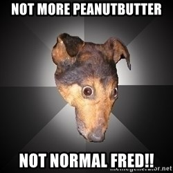 Depression Dog - nOT More peanutbutter NOT Normal fred!!