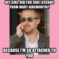 Hey Girl - Hey girl, did you take lessons from mary Ainsworth? because I'm so ATTACHED to you