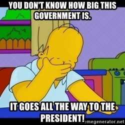 Homer Facepalm - You don't know how big this government is.  It goes all the way to the president!