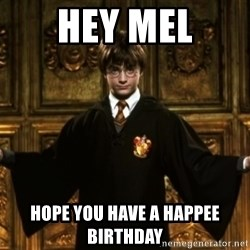 Harry Potter Come At Me Bro - Hey Mel Hope you have a happee birthday