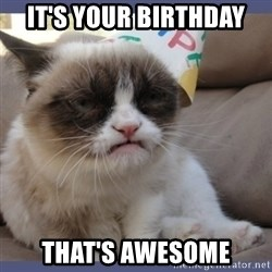 Birthday Grumpy Cat - It's your birthday That's awesome