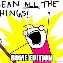 clean all the things -  Home Edition