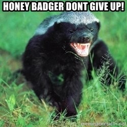 Honey Badger Actual - Honey badgeR dont give up!