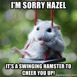 Sorry I'm not Sorry - i'm sorry hazel it's a swinging hamster to cheer you up!