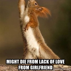 dramatic squirrel -  might die from lack of love from girlfriend