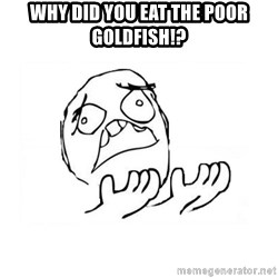 WHY SUFFERING GUY 2 - Why did you eat the poor goldfish!?