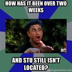 jersey shore - How has it been over two weeks And Stu still isn't located?