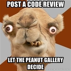 Crazy Camel lol - post a code review let the peanut gallery decide