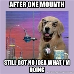 Dog Scientist - After one mounth Still got no idea what i'm doing