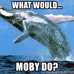 whaleeee - What would... Moby do?