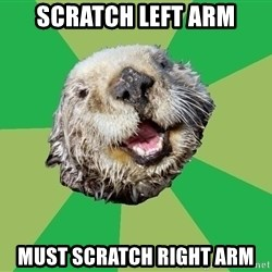 Ocd Otter - scratch left arm must scratch right arm
