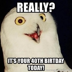 O Rly Owl - Really? It's your 40th biRtday today!