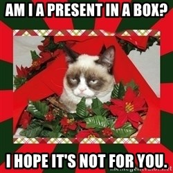 GRUMPY CAT ON CHRISTMAS - Am i a present iN a boX? I hOpe it's not for you.