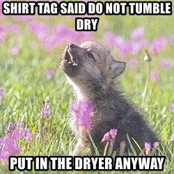 Baby Insanity Wolf - Shirt tag said do not tumble dry put in the dryer anyway