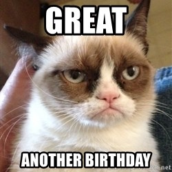 Grumpy Cat 2 - Great another birthday
