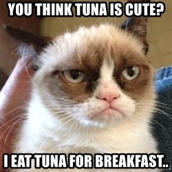 Grumpy Cat 2 - you think tuna is cute? I eat tuna for breakfast..