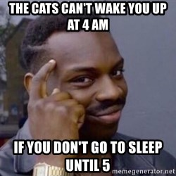 Roll Safe 2 - the cats can't wake you up at 4 am if you don't go to sleep until 5