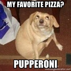 Oh You Dog - my favorite pizza?  PuppEroni