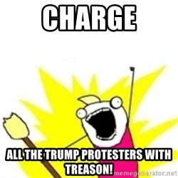 x all the y - Charge all the trump protesters with treason!
