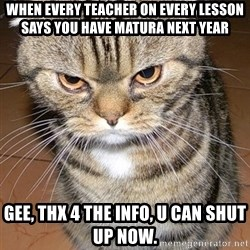 angry cat 2 - When every teacher On every lesson says you have matura neXt year  Gee, Thx 4 The info, u cAn shut up now.