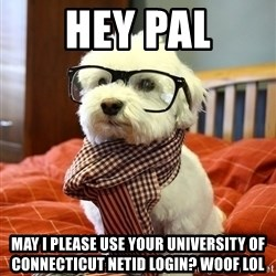 hipster dog - Hey pal May i please use yOur university of connecTicut netid login? Woof lol